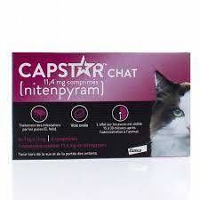 CAPSTAR CHAT 11,4MG - 6 COMPRIMES