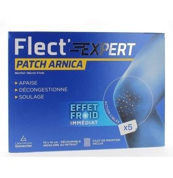 FLECT'EXPERT PATCH ARNICA X5