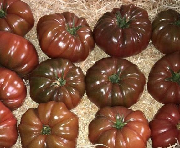TOMATE MARQUISE NOIRE 500 GRS