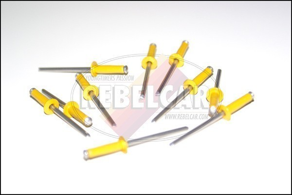 Lot de 1000 rivets jaunes