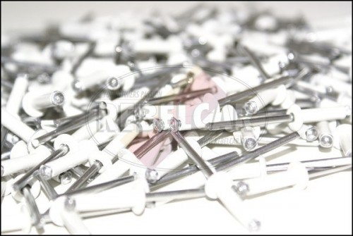 Lot de 250 rivets blancs