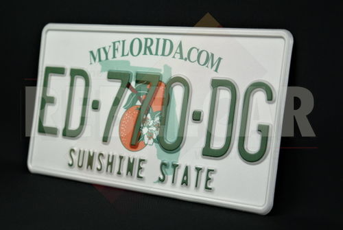 """US FLORIDA MYFLORIDA.COM license plate with orange blossom graphic over green state map, WHITE BORDER, size 300x150 mm / 12x6"""""""