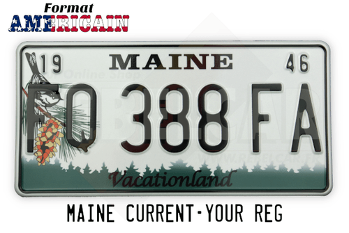US MAINE license plate with black-capped chickadee on pine cone, BLACK BORDER, size 300x150 mm / 12x6""