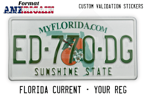 US FLORIDA MYFLORIDA.COM license plate with orange blossom graphic over green state map, WHITE BORDER, size 300x150 mm / 12x6""