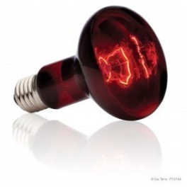 Nightlight red 100 watt de Zoomed  15.90€