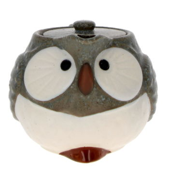 """""""Owl"""" Japanese teapot with filter - Blue/Grey 480ml"""
