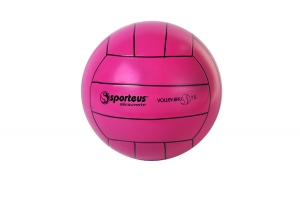 Ballon de volley-ball PVC T5
