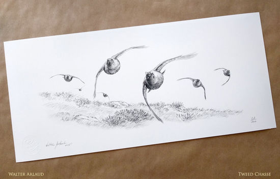 Tirage d'art Driven red grouse