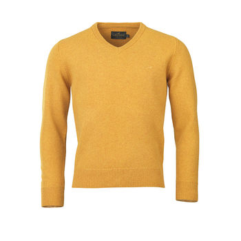 Johnston v-neck gorsy knitwear