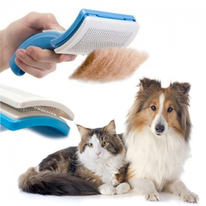 Brosse pour animaux